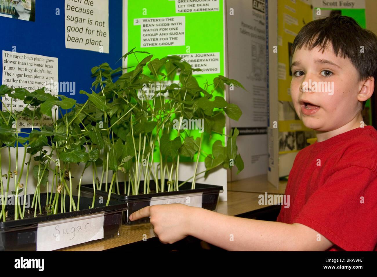 An Elementary School Boy Explains His Science Fair Project
