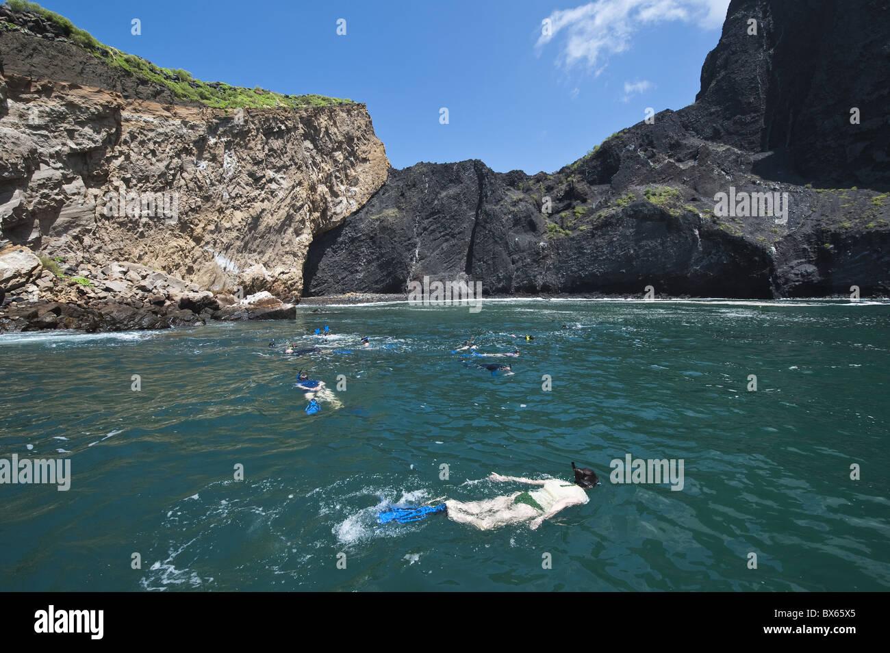 Snorkeling At Vincente Roca Point On Isla Isabela Isabela Island Stock Photo