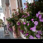 Magnolias Restaurant In Charleston Sc Stock Photo Alamy
