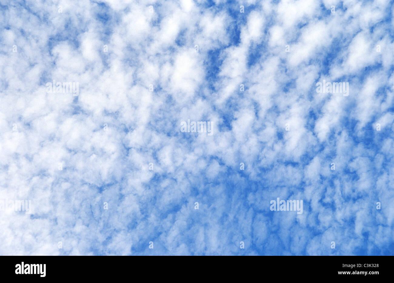 Mackerel Sky Cirrocumulus Clouds At A Blue Sky Over