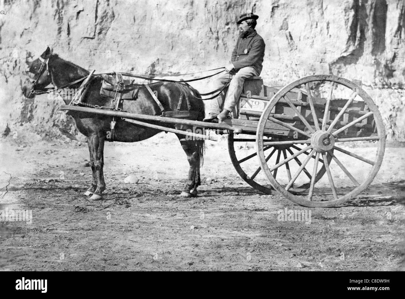 Image result for horse pulling cart civil war era
