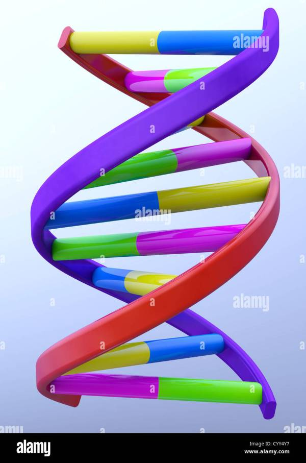 DNA Double Helix Model on light blue background - 3D ...