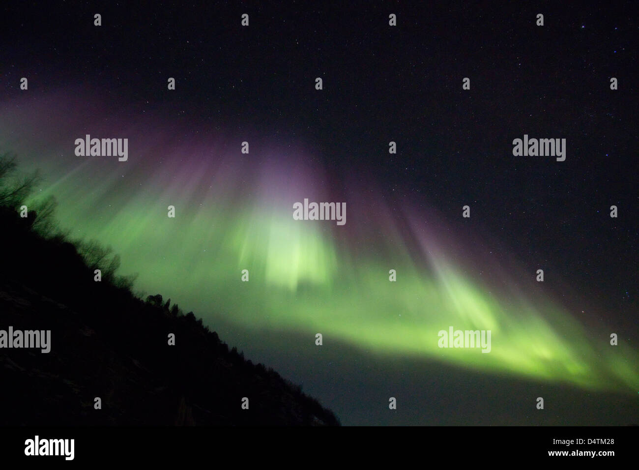 Kvaloya Northern Lights