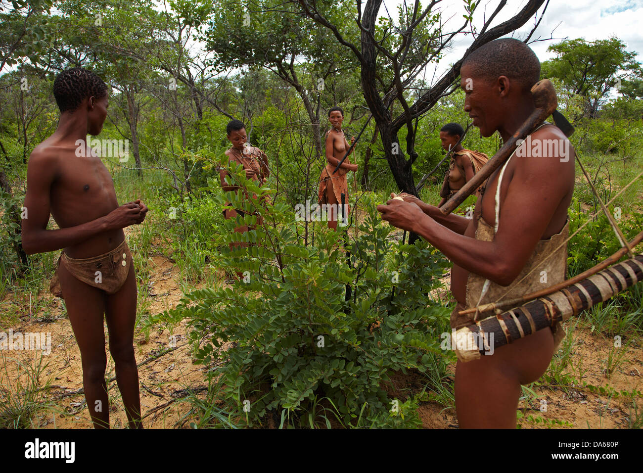 Hunter Gatherer Stock Photos Amp Hunter Gatherer Stock Images