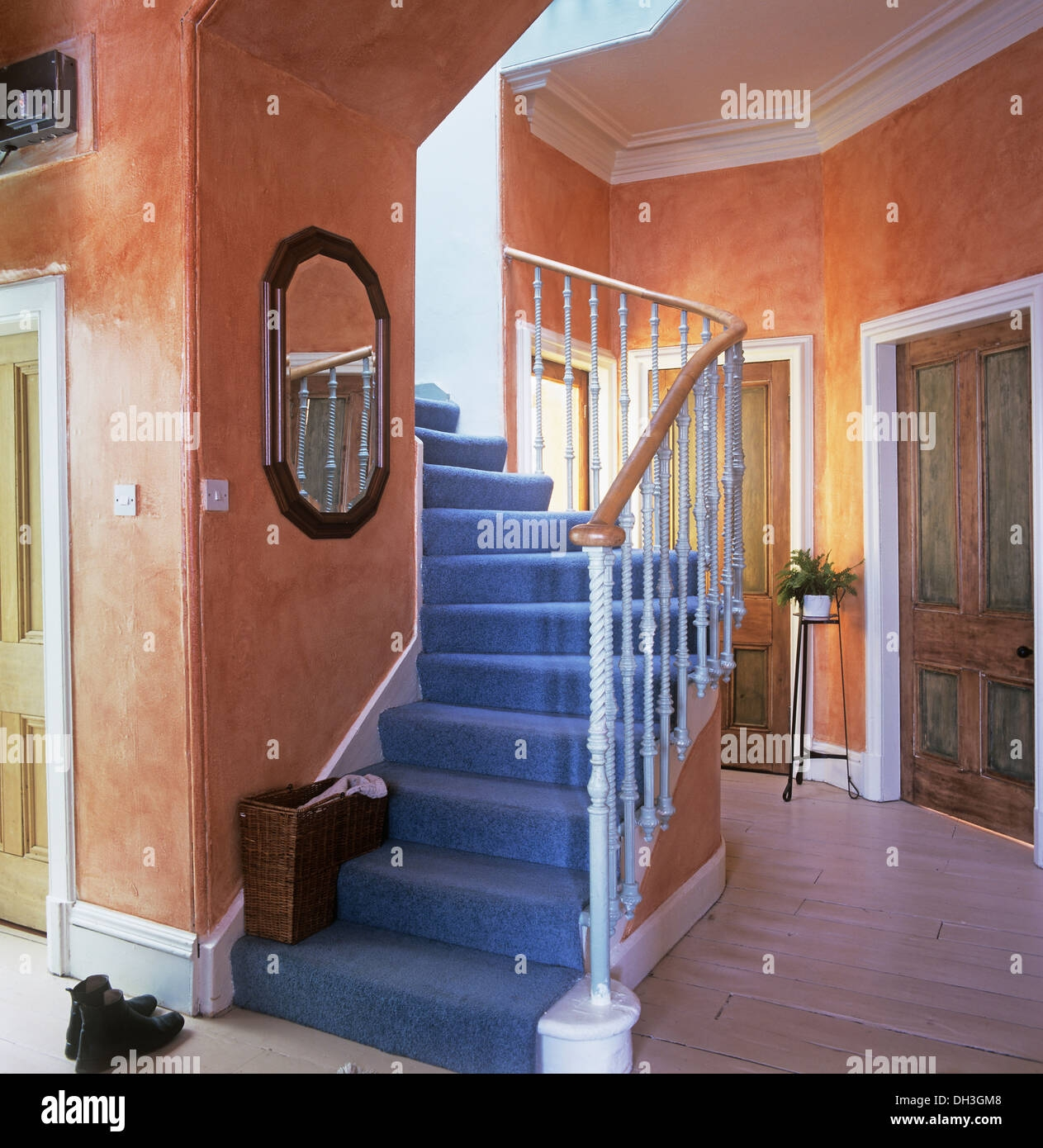 Blue Carpet On Staircase In Pale Orange Sponging Effect Hall With   Blue Carpet On Stairs   Wooden   Grey Stair White Wall   Antelope   Geometric   Gray
