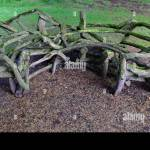 Wooden Wood Garden Bench Seating Made From Tree Branches Limbs Rustic Stock Photo Alamy