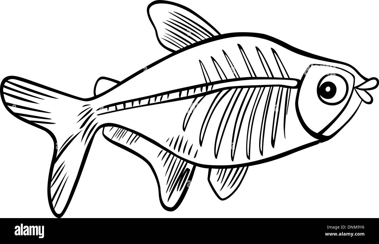 Cartoon Illustration Of X Ray Fish For Coloring Book Stock