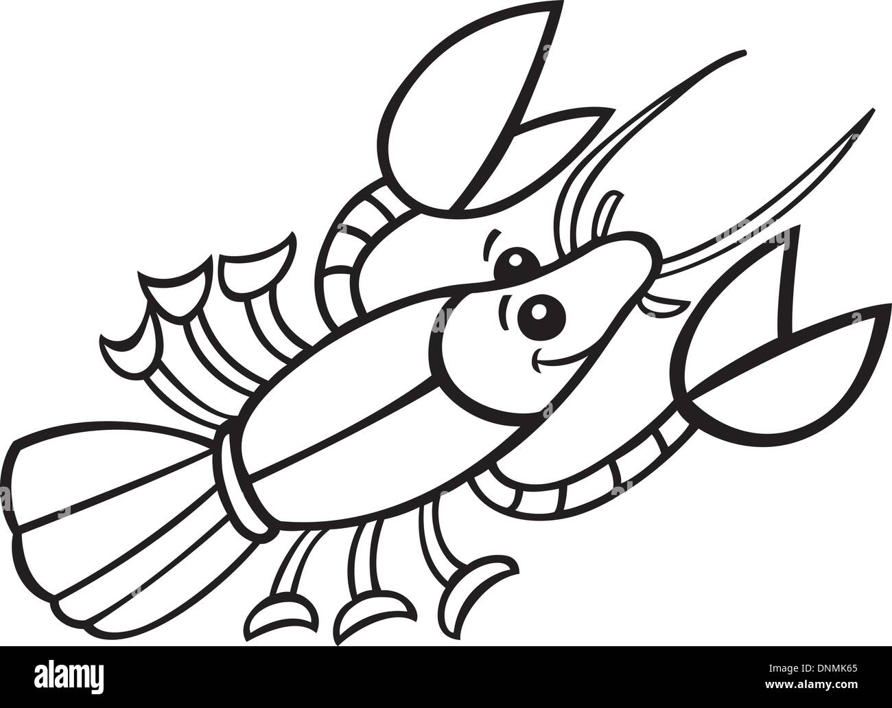 Crayfish Black And White Stock Photos Amp Images