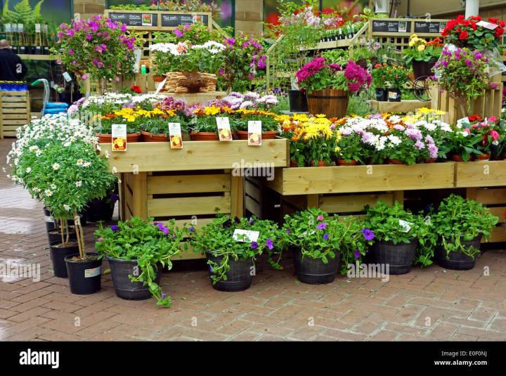 gardening centre stock photos & gardening centre stock images - alamy