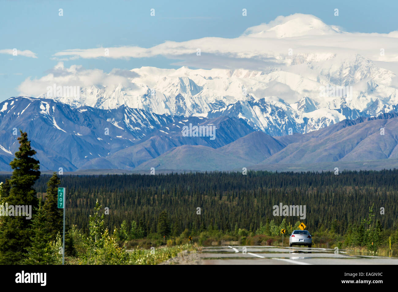 Mt  Mckinley Viewed From George Parks Highway  Interior Alaska Stock     Mt  Mckinley Viewed From George Parks Highway  Interior Alaska  Summer
