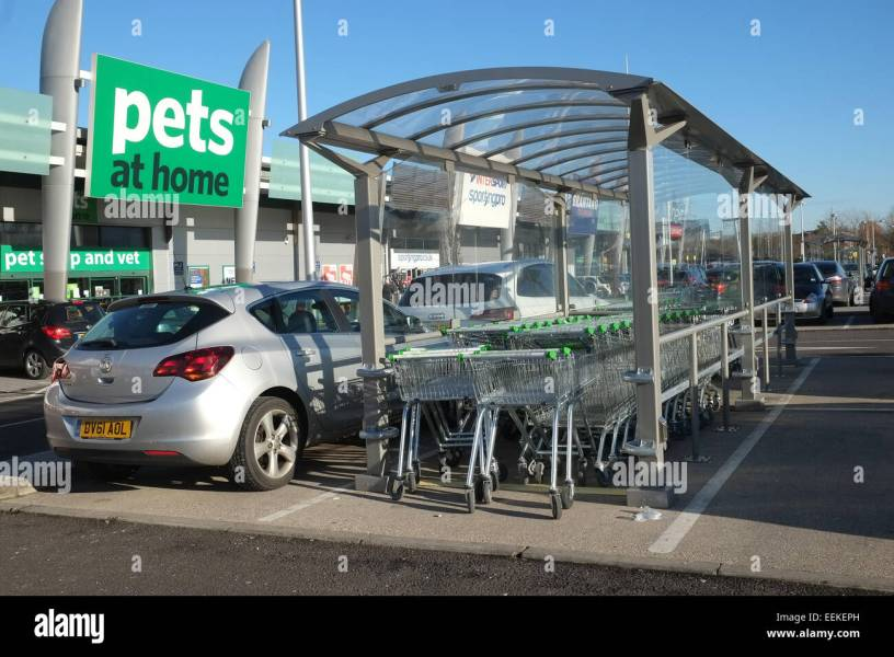 Shopping trolley cart paring bay shelter in an ASDA  Walmart  car     Shopping trolley cart paring bay shelter in an ASDA  Walmart  car park lot   19th January 2015