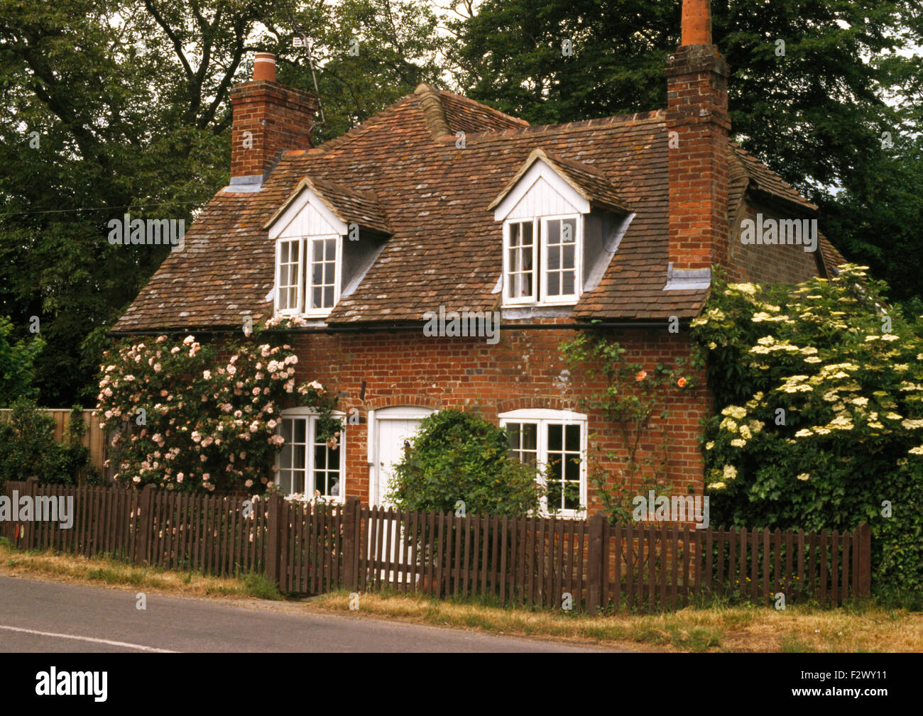 Wooden Picket Fence Bordering Cottage With Climbing Roses
