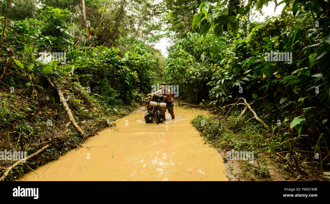 Deforestation rates in the congo basin — historically lower than in the amazon and southeast asia — are on the rise. Cycling Through The Congolese Jungle Democratic Republic Of Congo Stock Photo Alamy
