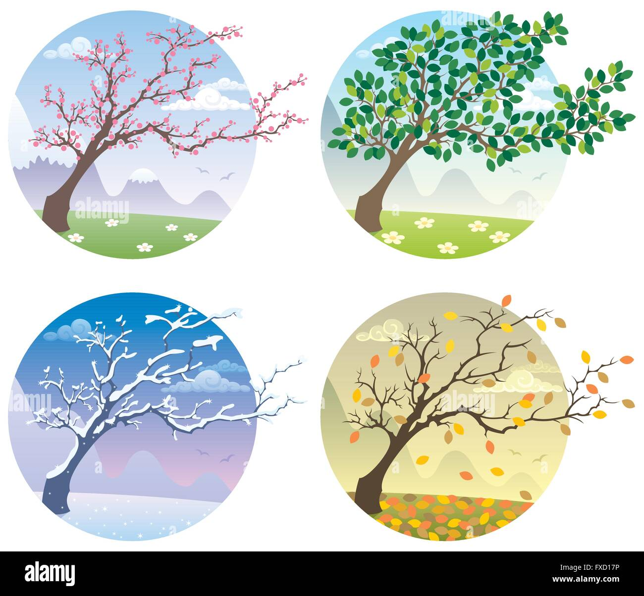 Cartoon Illustration Of A Tree During The Four Seasons