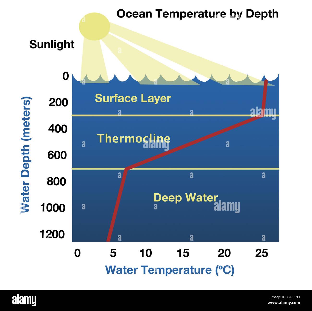 Picture Of Ocean Floor Diagram