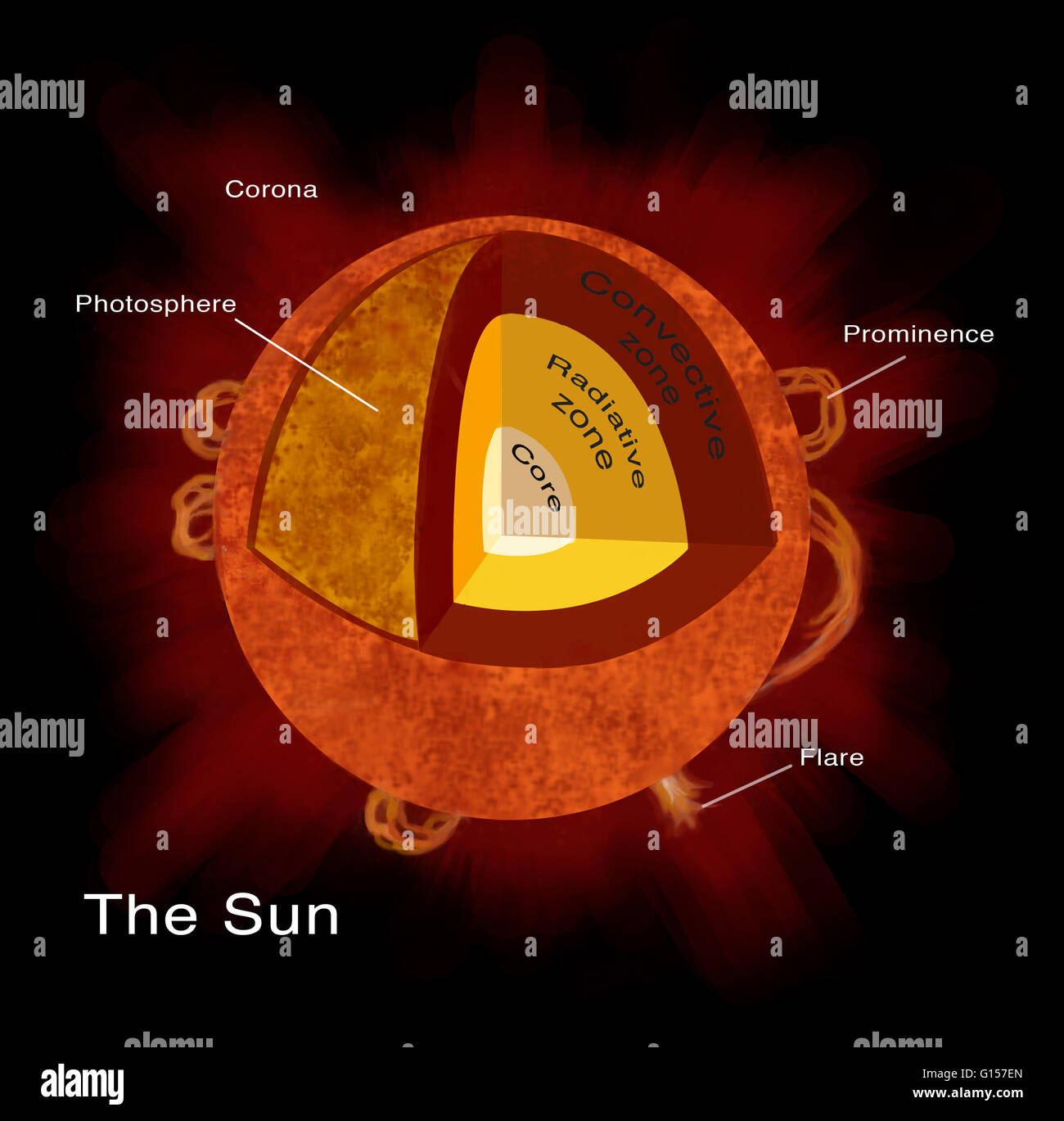 Illustration Of The Structure Of The Sun At The Sun S