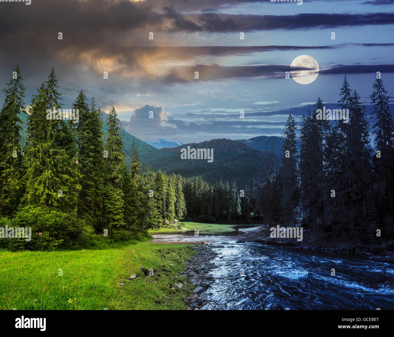 Collage Day And Night Landscape With Pine Trees In Mountains And A Stock Photo
