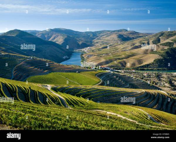 Portugal, the Douro Valley, the Port Wine district ...