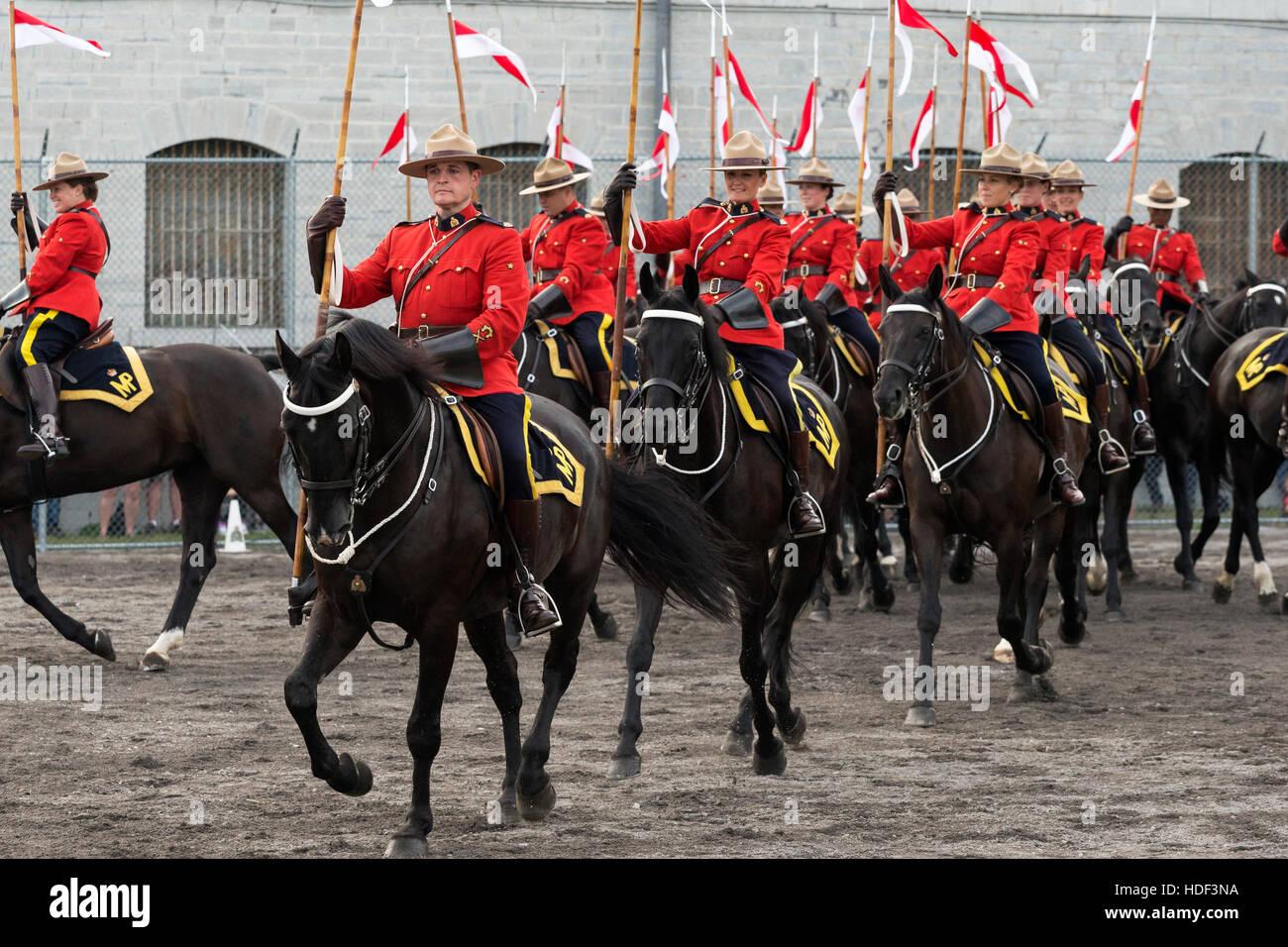 Royal Canadian Mounted Police Horse Ontario Canada Stock