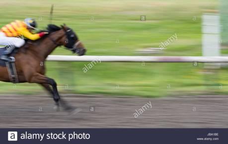 Image result for Jockey Enrique Gonzalez