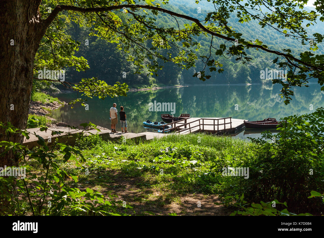 As i mentioned in the first feature, there is a structured s. Biogradsko Jezero In Montenegro Protected Forest Stock Photo Alamy