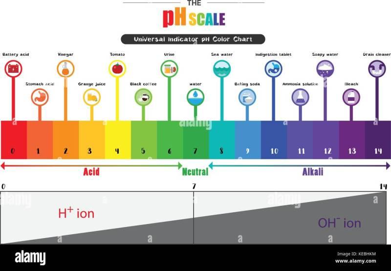 Alkaline Color Chart Coloringsite