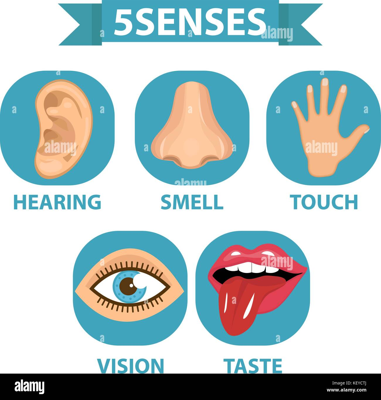5 Senses Icon Set Touch Smell Hearing Vision Taste