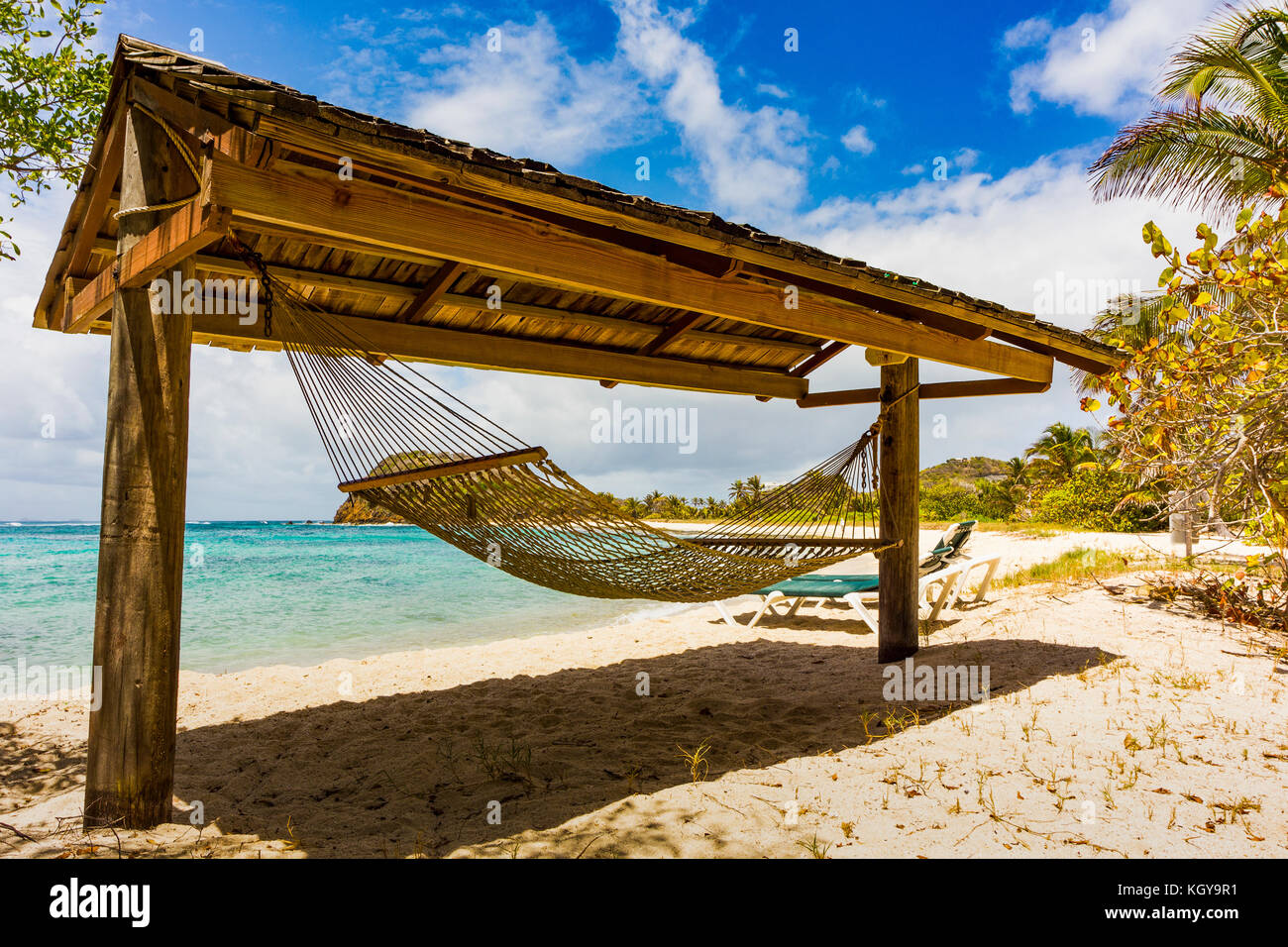 Island Palm Tree Hammock Resort Stock Photos Amp Island Palm