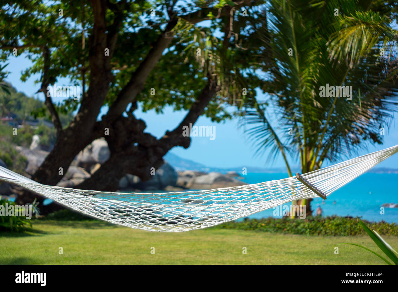 Island Palm Tree Hammock Resort Stock Photos Amp Island Palm