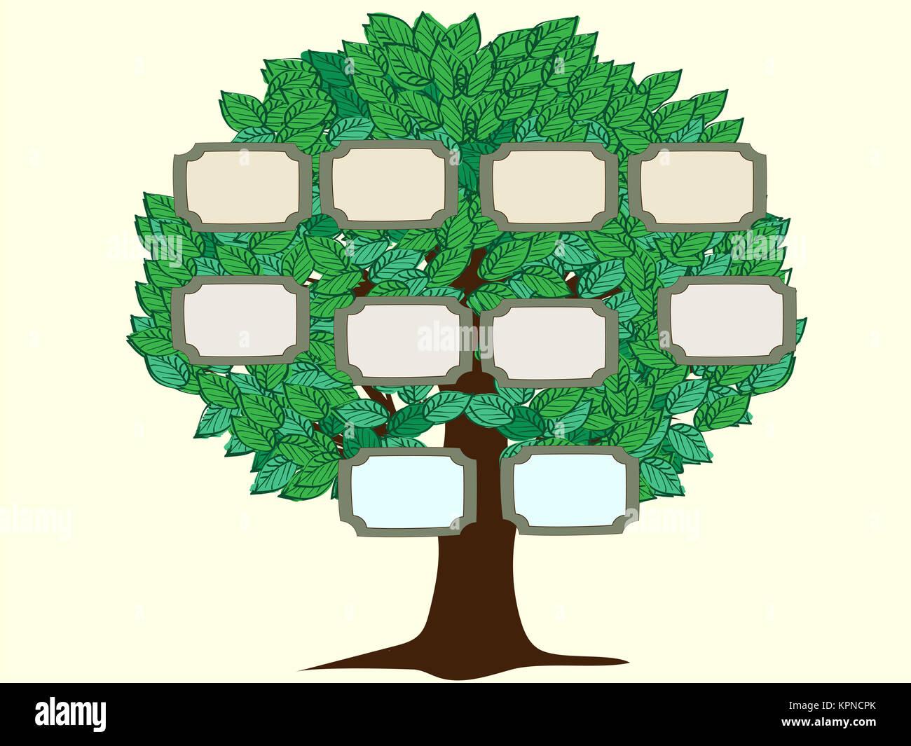 Family Tree Vector Template Stock Photos Amp Family Tree
