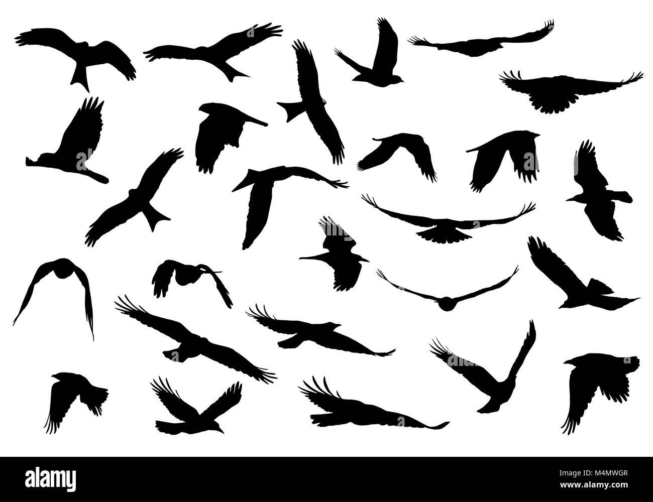Www tattos www gmail com www fb com www livescores com www fb com simplephotos gallery view original image french minister visits cuba p www suryasixpackbody com copy atharva six pack valid www www suryasixpackbody com thecheapjerseys Images