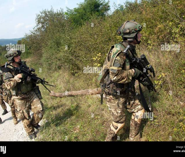 Slovenian Army Soldiers From The 74th Motorized Battalion Move To Secure An Objective Sept 15 2016 During Training As Part Of Exercise Immediate