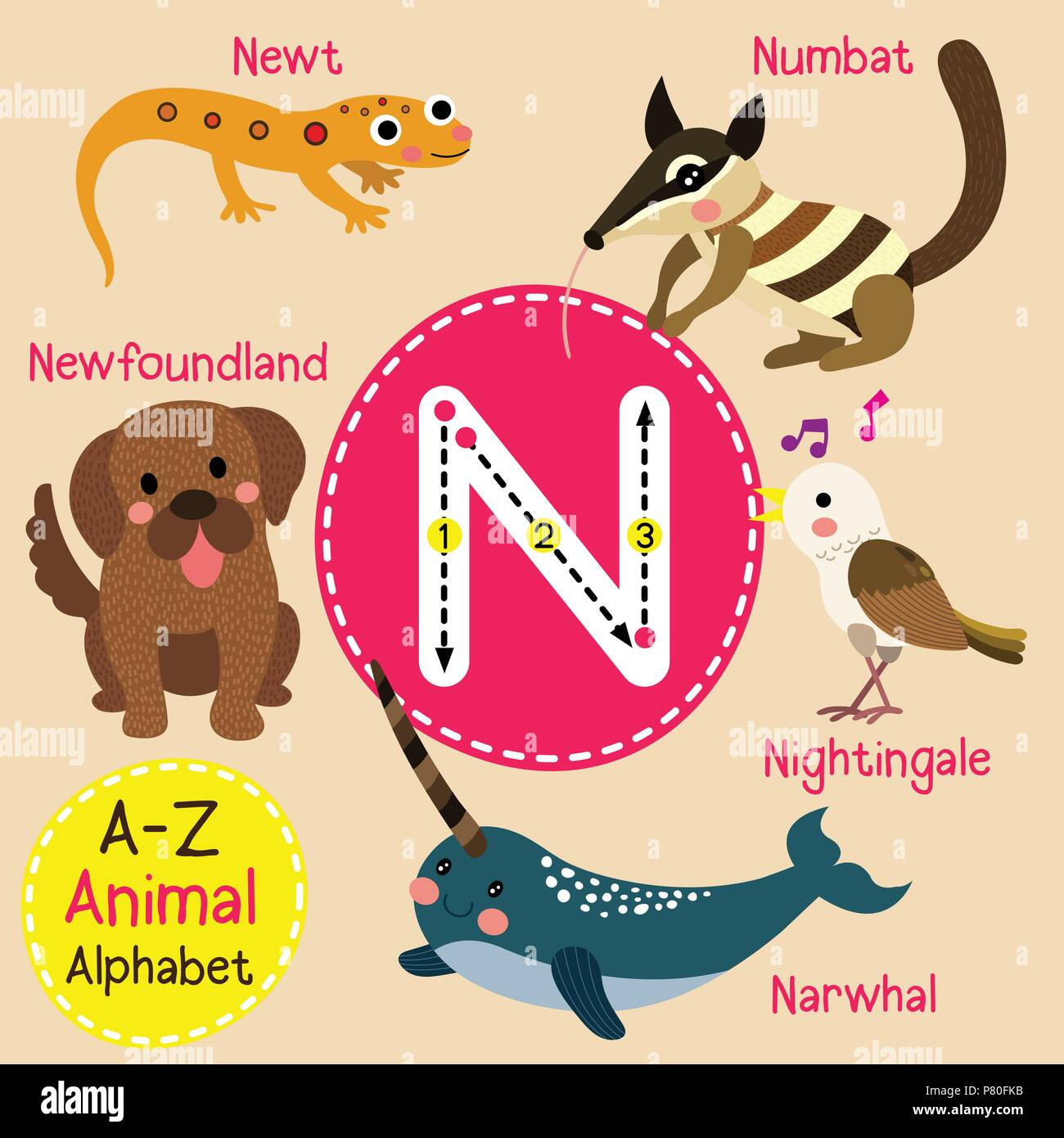 Cute Children Zoo Alphabet N Letter Tracing Of Funny