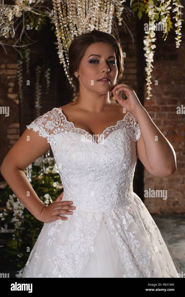 portrait of a beautiful bride. lace dress. wedding hairstyle