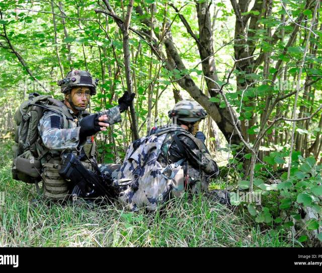 Slovenian Albanian And British Soldiers Conduct Training During At Immediate Response  2015 Near Postonja Slovenia Ir 15 Is A Multinational
