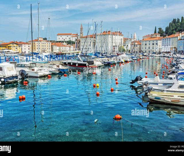 Many Boats In Harbor And Old Town Piran Slovenia Summer Vacation Destination Vibrant Colors