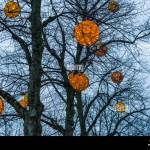 Round Balls Filled With Lights Hanging In The Trees Beautiful Outdoor Winter Decorations Stock Photo Alamy