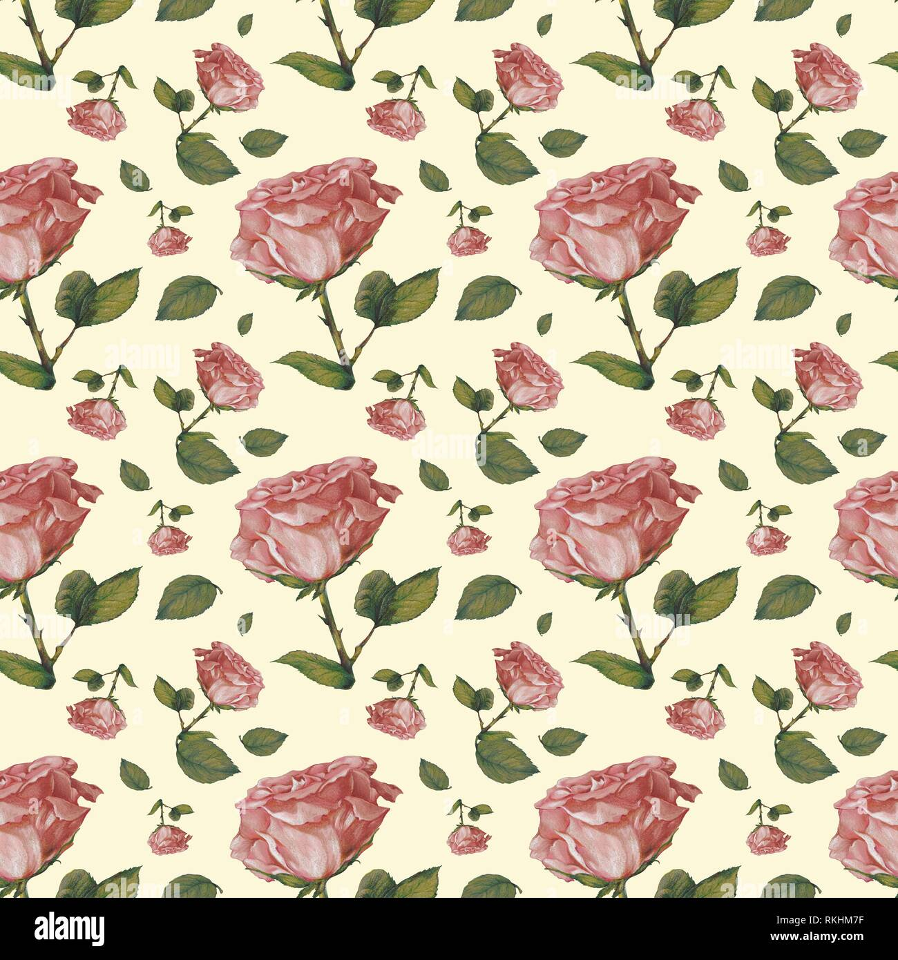 Wallpaper Wrapping Paper Seamless Pattern Old Pink Roses Background Cream Germany