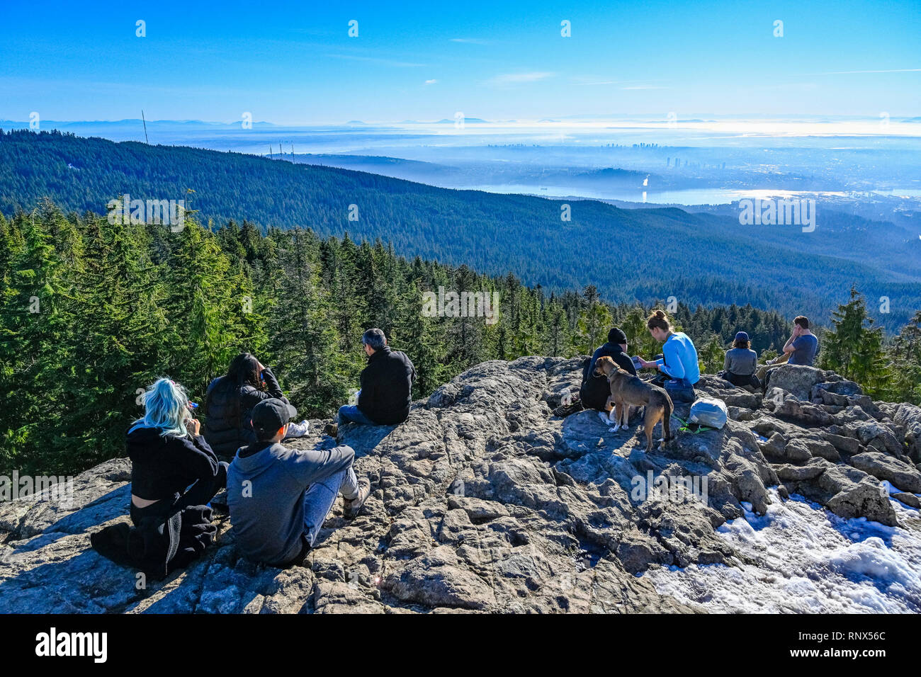The first one can lead you up to dog mountain, whereas the second longer trail takes you on a path to mount seymour to two different viewpoints:. Hikers Relaxing At Dog Mountain Lookout Mount Seymour Provincial Park North Vancouver British Columbia Canada Stock Photo Alamy