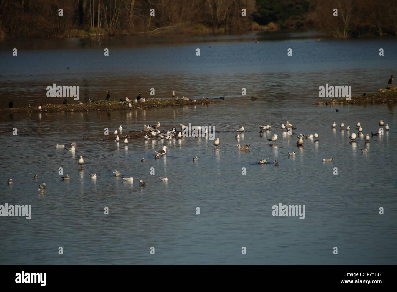 Human Habitat Stock Photos Amp Human Habitat Stock Images
