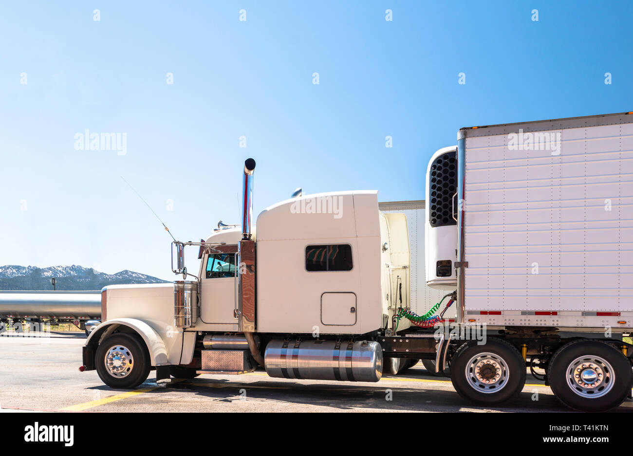 https www alamy com white big rig beautiful classic american powerful semi truck with chrome exhaust pipes with attached refrigerated semi trailer with refrigerator unit image243441317 html