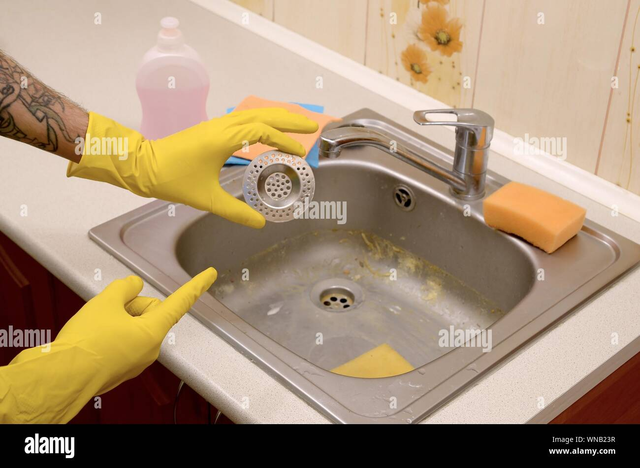 https www alamy com cleaner in rubber gloves shows clean plughole protector of a kitchen sink steel sink drain filter trash traps grid of drainage holes image271306443 html