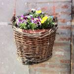 Flower Basket Wall Hanging High Resolution Stock Photography And Images Alamy