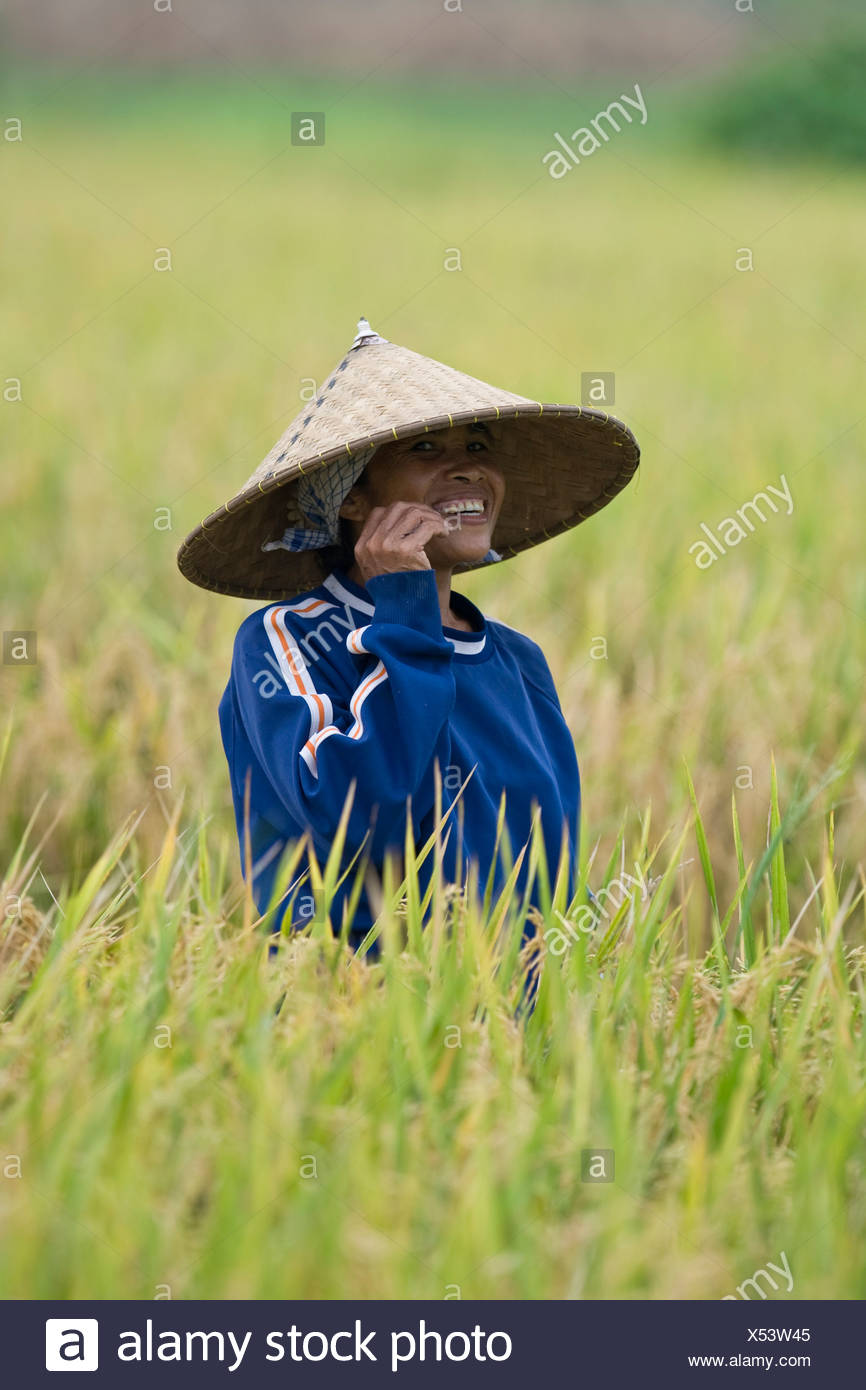 Female Rice Farmer Wearing A Traditional Straw Hat Standing In A Field Of Rice Lombok Island Lesser Sunda Islands Indonesia Stock Photo Alamy