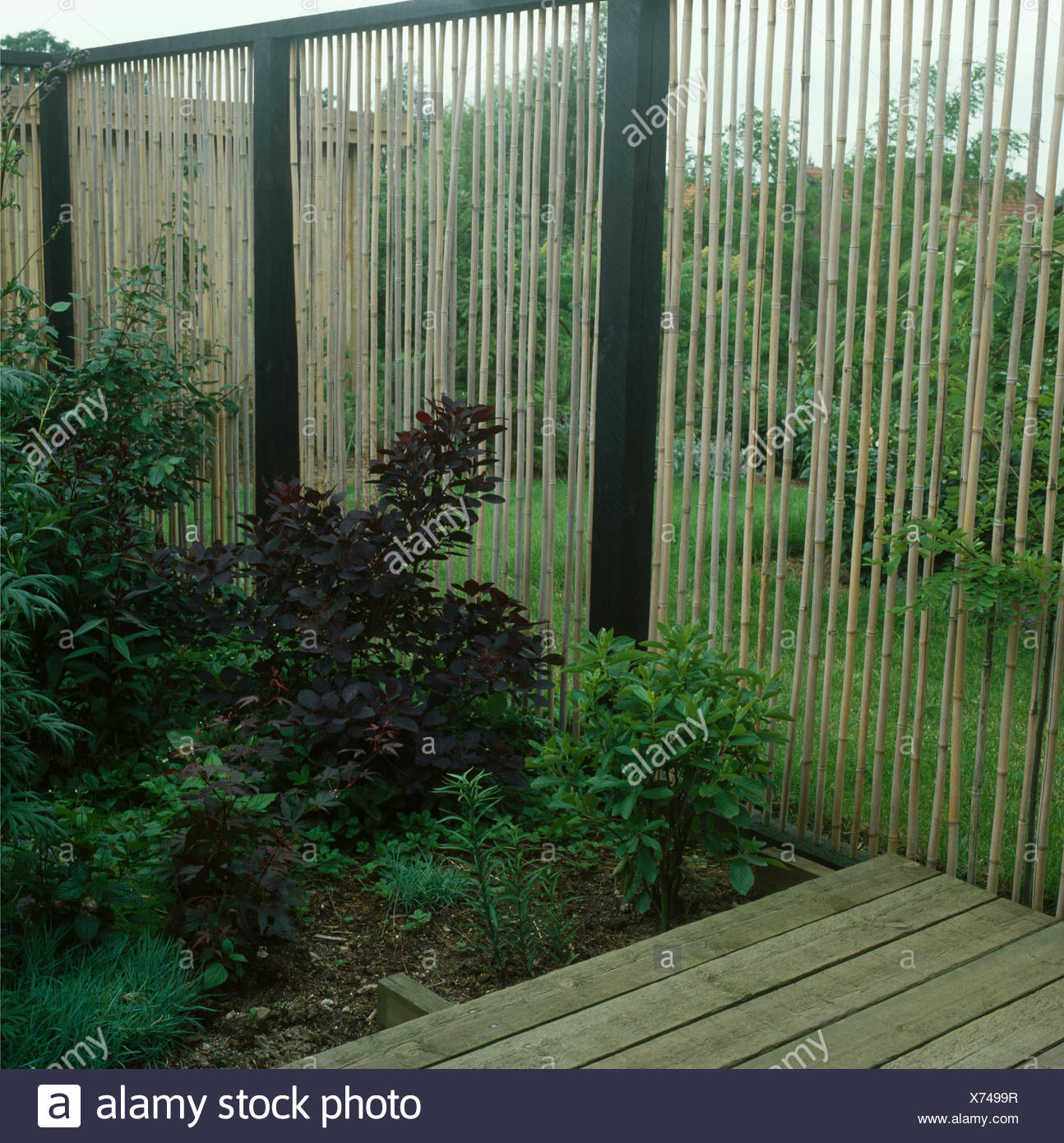 Bamboo Fence Beside Shrubs In Garden Border Stock Photo Alamy