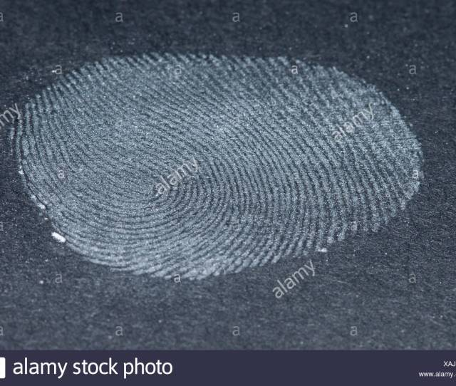 Step 5 Fixed Fingerprint Stock Image