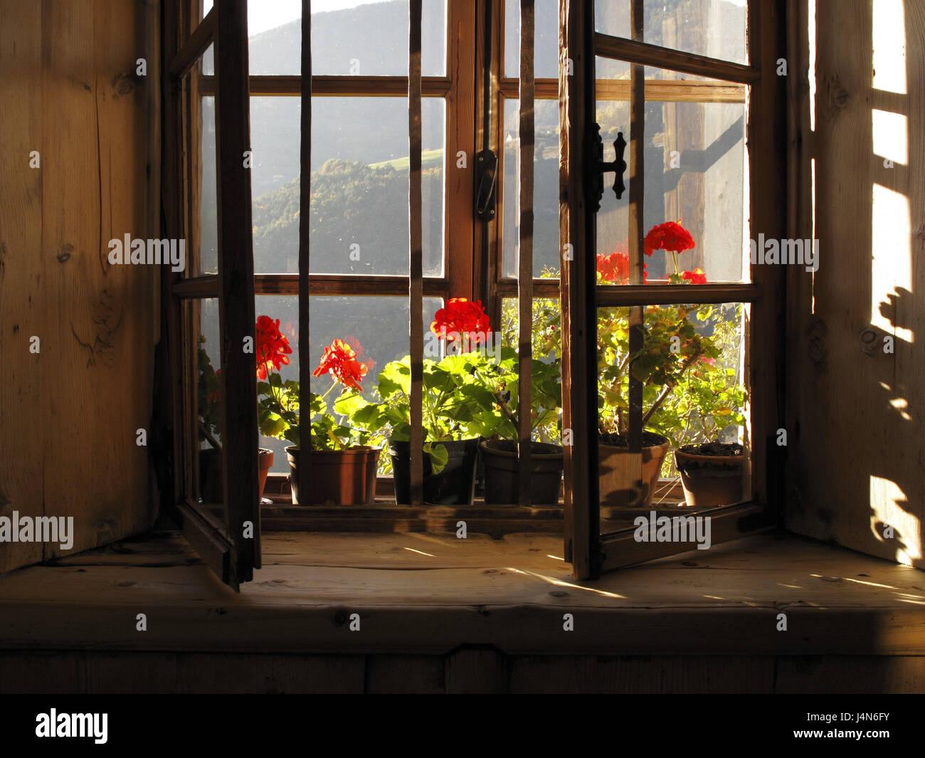 Bauernhaus-Fenster mit Blumenschmuck von innen, Architektur