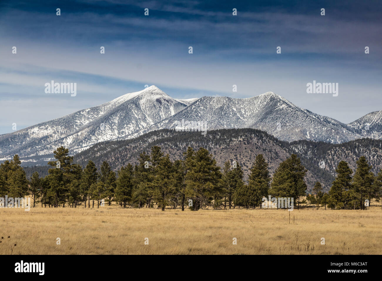 Flagstaff, arizona is sits at the base of the san francisco peaks, surrounded by the largest ponderosa pine stand on earth. Blick Auf San Francisco Peaks Von Buffalo Park Flagstaff Arizona Stockfotografie Alamy