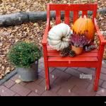 Herbst Dekoration Mit Kurbissen Tannenzapfen Und Pflanzen Auf Einem Roten Stuhl In Einem Garten Stockfotografie Alamy