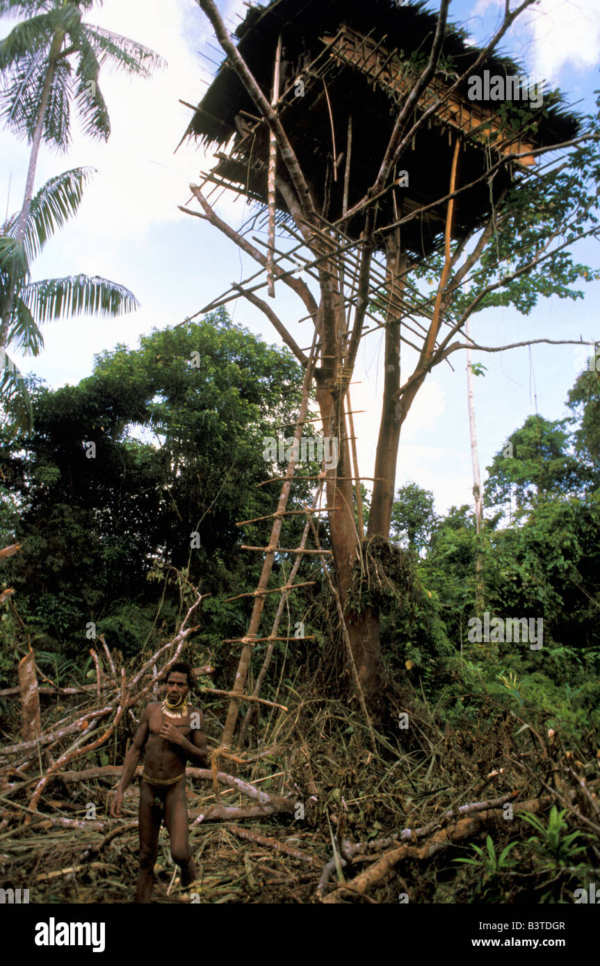 Korowai Tree House Fotos E Imagenes De Stock Alamy